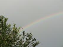 Rainbow4 zdjęcie royalty free