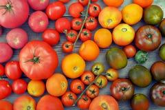 Rainbow from tomato. Royalty Free Stock Photos