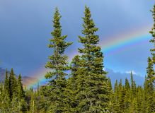 Rainbow on Top of the World Road. Rainbow behind the tress and in front of Mountains in Alaska Royalty Free Stock Photo