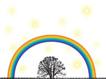 Rainbow tree Stock Images