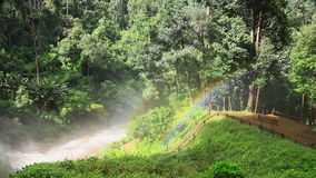 Rainbow at a tropical rain forest. In Chiang Mai, thailand stock footage
