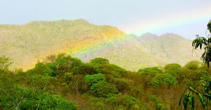 A rainbow in the tropics Stock Image