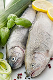 Rainbow Trout. With fresh vegetable and lemon stock image