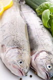 Rainbow Trout. Fresh raw Rainbow Trout with vegetable Stock Photo