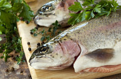 Rainbow Trout. Two rainbow trout on a board, with herbs and peppercorns, ready for cooking stock images