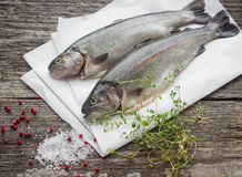 Rainbow trout for baking Stock Images