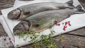 Rainbow trout for baking Royalty Free Stock Image