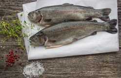 Rainbow trout for baking Stock Photo