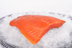 Rainbow trout fillet. A mild tasting fish also known as steelhead trout or salmon trout, resting on a bed of crushed ice stock image