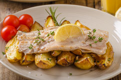 Rainbow trout fillet with roasted potatoes. Baked rainbow trout with roasted potatoes and homemade mayonnaise Stock Photos