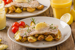 Rainbow trout fillet with roasted potatoes. Baked rainbow trout with roasted potatoes and homemade mayonnaise Stock Image