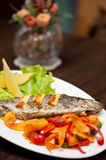 Rainbow trout fish. Tasty dish of rainbow trout fish with vegetables Royalty Free Stock Photography
