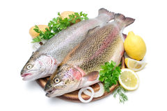 Rainbow trout. With fresh herbs isolated on white background stock photo