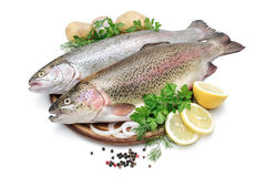 Rainbow trout with fresh herbs. Isolated on white background Stock Photo