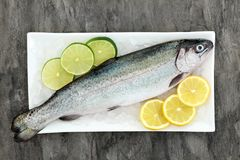 Rainbow Trout Health Food. On crushed ice with lemon and lime fruit on marble background. Very high in omega 3 fatty acid and beneficial to maintain a healthy Royalty Free Stock Photography
