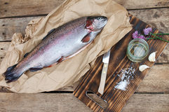 Rainbow trout (Oncorhynchus mykiss). Fresh trout ready for grilling or baking royalty free stock image