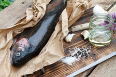 Rainbow trout (Oncorhynchus mykiss). Fresh trout ready for grilling or baking royalty free stock photography