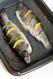 Rainbow trout. Raw fresh trout with basil, spice and lemon ready for cooking royalty free stock photography