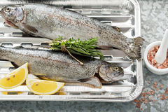 Rainbow trout ready to be grilled Royalty Free Stock Image