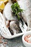 Rainbow trout ready to be grilled. Rainbow trout on a foil dish ready to be grilled Stock Photo