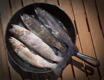 Rainbow Trout In A Skillet Stock Photo