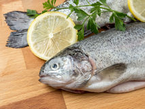 Rainbow trouts. Two raw rainbow trouts on wooden board decorated with parsley and lemon slices royalty free stock image