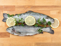 Rainbow trouts. Two raw rainbow trouts on wooden board decorated with parsley and lemon slices stock photo