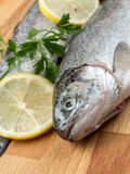 Rainbow trouts. Two raw rainbow trouts on wooden board decorated with parsley and lemon slices royalty free stock images