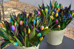 Rainbow tulips Stock Photography