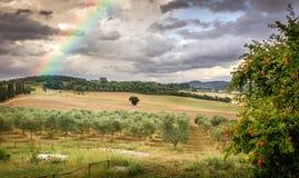 Rainbow in Tuscany Stock Photos