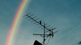 Rainbow, Tv antenna and a crow, roof top, house, bird. Rainbow, Tv antenna and a crow, roof top, house, bird, Computer generated stock footage