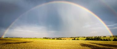 Rainbow. Two rainbows above a cornfield Royalty Free Stock Photo