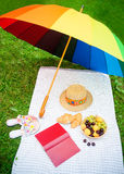 Rainbow umbrella, book, hat, shoes and fruits on the grass Stock Photos