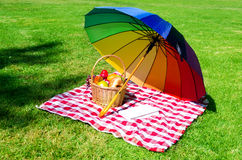 Rainbow umbrella, book and Picnic basket Royalty Free Stock Images