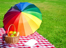 Rainbow umbrella, book and Picnic basket. With fruits on the grass Stock Images