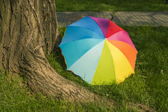 Rainbow umbrella on the grass Royalty Free Stock Images