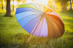 Rainbow umbrella on green grass background Royalty Free Stock Photo