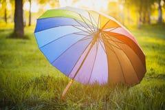 Rainbow umbrella on green grass background Royalty Free Stock Photo