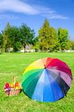 Rainbow umbrella and Picnic basket Royalty Free Stock Photos