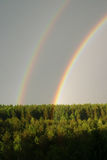 Rainbow under the forest. A rainbow is an optical and meteorological phenomenon that is caused by reflection of light in water droplets in the Earths atmosphere Stock Photography