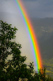 Rainbow in the valley. Rainbow in the norwegian valley with green branches in front royalty free stock photography