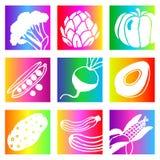 Rainbow vegetables Stock Image