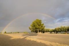 Rainbow. Stock Image