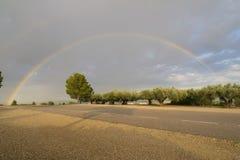 Rainbow. Stock Photos