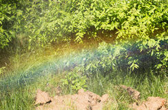Rainbow from a water fountain in the nature Royalty Free Stock Images