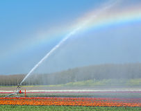 Rainbow and water, Holland Royalty Free Stock Images