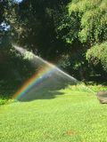 Rainbow from the water that waters the lawn royalty free stock photography
