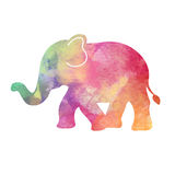 Rainbow watercolor Elephant illustration Stock Images