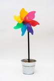 Rainbow windmill on a stick in a pot Stock Photos