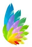 Rainbow wing Stock Photos